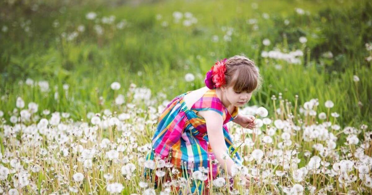 Coaching célok, örömteli, jól megélt élet, GRIT, flow, célok elérése. Kislány virágot szed a mezőn.